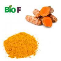 China Organic Animal Feed Additive Turmeric Extract Powder 99% Curcumin on sale
