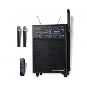 China sistema de oradores sem fio portátil do PA do microfone da frequência ultraelevada 250w on sale
