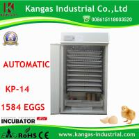 Competitive Price and Automatic Chicken Quail Egg Incubator for Hatching (KP-15) Incubator Spare Parts