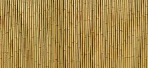 China bamboo fencing, fencing, garden fence, bamboo screen, bamboo panel on sale