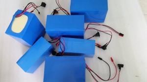 China customized LiFePO4 Battery 24V 36V 48V on sale