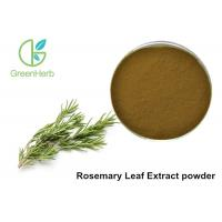 5% Rosmarinic Acid Rosemary Leaf Extract Powder Brown Yellow Color