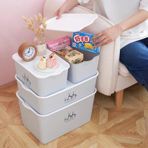 China Living Room Bedroom Underwear Plastic Organizer Box With Lid on sale