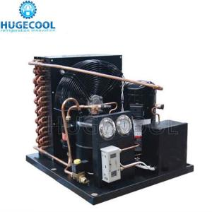 China Small Cold Room Condensing Unit Low Noisy For Cold Room Refrigeration on sale