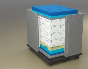 China Una caja más fresca aislada caja de empaquetado más fresca de la cadena fría con el EPP on sale