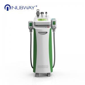 China Weight Loss Machine and firming cryolipolysis fat freeze slimming machine on sale
