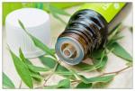 tea tree oil Anti-microbial laundry freshener, Cheap tea tree essential oil for making Natural deodorant