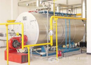 China 3 ton  gas, oil, dual fuel fired steam boiler on sale