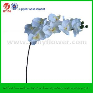 China Home Decoration Flower of Silk Orchid 9FLWS+3BS on sale