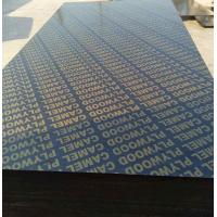 18mm finger joint plywood film faced plywood black film faced plywood for building construction