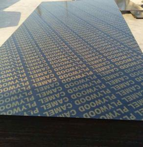 China 18mm finger joint plywood film faced plywood black film faced plywood for building construction on sale