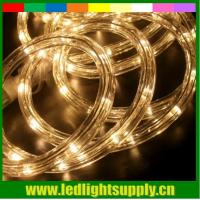 China led neon light dimmer warm white 2 wire christmas rope lights on sale