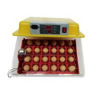 Biobase New Product Egg incubator Price Hot for Sale