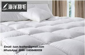 China China supplier Online Shopping White Goose Feather and Down Pillows Triple Chamber 100% Cotton 300 on sale