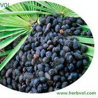 China High-quality Saw Palmetto Extract Organic Food Additives Improve sperm production on sale