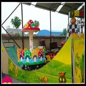 China New  amusement park rides kids track rides double wave sliding car fairground rides on sale