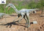 China High Simulation Realistic Dinosaur Statues For Dinosaur Theme Park / Customizable wholesale