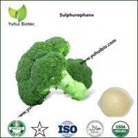 best sulforaphane supplement,best sulforaphane supplement,sulforaphane 0.5%