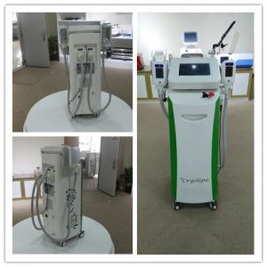 China 15 inch big screen blue Cryolipolysis slimming machine say no to fatness on sale