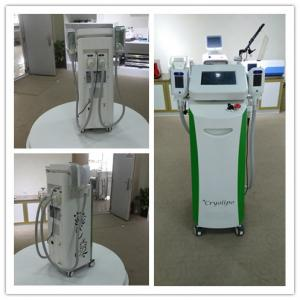 China Max -15 Celsius fat cell freezing commercial criolipolisis machine freeze fat on sale