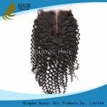 Silk Base Human Hair Top Closures 100% Virgin Hair Loose Wave 4  X   Inches