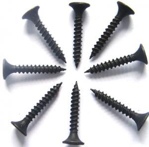 China # 2 Bugle Head Drywall Screws For Treated Pine , Twinfast Thread Black Chipboard Screws on sale
