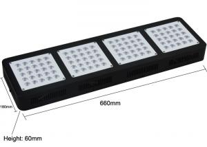 China 10 - 12Bands Full Spectrum 300w Cree Led Grow Lights Floricultural Agricultural Horticultural on sale