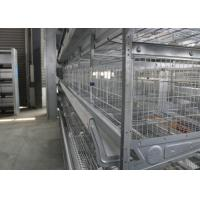 High Performance Industrial Chicken Coop Easy To Assemble ISO Certification