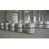 Roof Panel Hot Dipped Galvanized Steel Strip , Zinc Coated Steel Strip Coil
