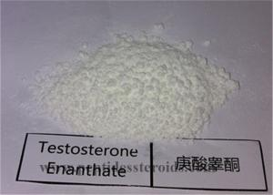 China High Purity Bodybuilding Steroid Hormone Test Testosterone Enanthate Powder Cas 315-37-7 on sale