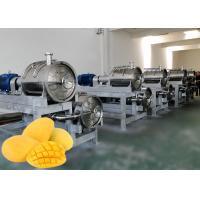 China SUS 304  Mango Processing Line 10 T/H Mango Pulp Processing Plant on sale