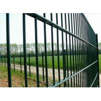 China Hebei Anping high quality 8/6/8 6/5/6 welded double wire fence on sale