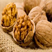 Walnut,walnut in shell or walnut kernels