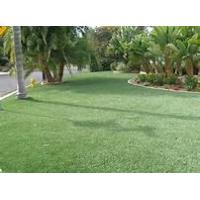 5800 Dtex Nylon Artificial Grass 12mm , UV resistant , putting green
