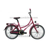 "20"" City Bike (TMS-20GD)"