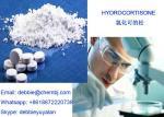 Cortical Hormone Body Health Supplement Hydrocortisone Powder CAS 50-23-7