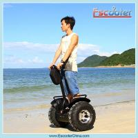2015 High quality electric chariot segway scooter price with CE, ROHS, FCC
