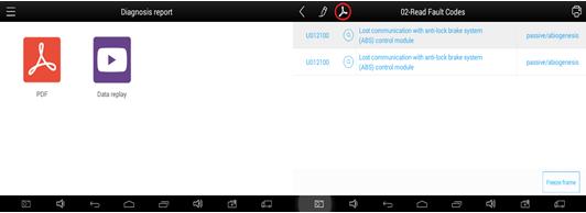 PDF File Display