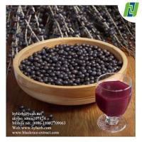 China antioxidant keepling slim Natural Acai Berry Extract on sale