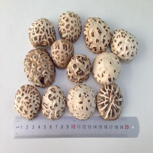 China Factory Price Dried White Flower Mushroom Whole 3KG with Cap 3-4 CM on sale