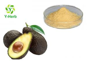 China Avocado Powdered Fruit Juice Concentrate Avocado Seed Leaf Extract Capsules Powder on sale