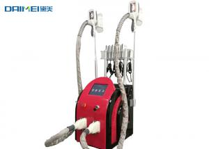 China Multifunctional Cryolipolysis Slimming Machine / Belly Fat Removal Machine on sale