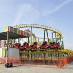 Funfair Rides Carnival Rides Amusement Park Equipment Crazy Mouse Roller Coaster