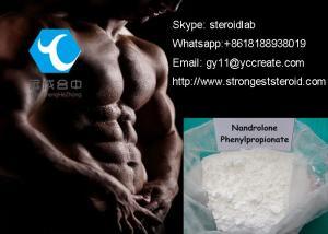 China CAS 62-90-8 NPP Deca Durabolin Steroid Nandrolone phenylpropionate / Durabolin on sale