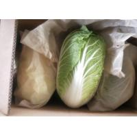 Green Color Organic Chinese Cabbage Big Size Japan Standard Own Bases