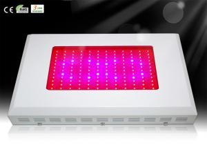 China 144x3w favorables à l'environnement 5760 lumières croissantes menées d'intérieur d'usine de lumens, menées élèvent la lampe on sale