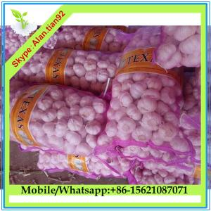 China Import Chinese Fresh White Garlic For Sale on sale