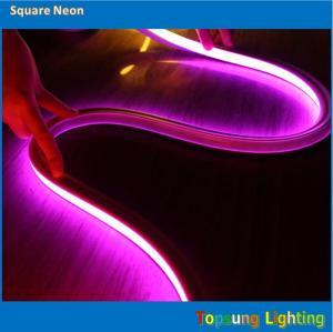 China SUPER bright square 127v 16*16m PINK led neon light on sale