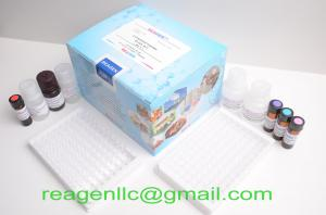 China Total Protein Assay Kit on sale