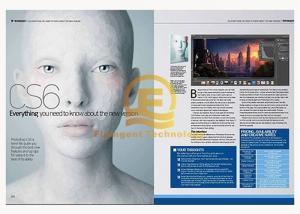 China Original Illustrator Adobe Graphic Design Software DVD Activation 32/64- Bit on sale